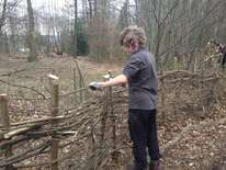 Hamlet Wood Working Party - February 2012